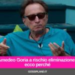 Amedeo Goria a rischio eliminazione: ecco perché
